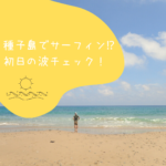 【サーフィン】種子島に着いた初日の波チェック。