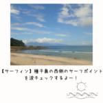 【サーフィン】種子島の西側のサーフポイントを波チェックするよー!