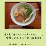 屋久島で塩ラーメンを食べるならココ。安房にある【らーめん日高家】